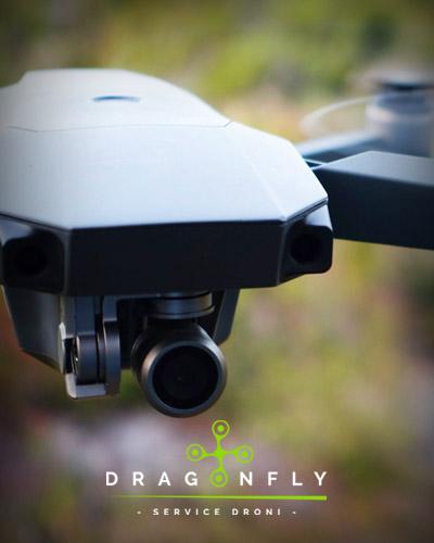 www.dragonflydroni.it